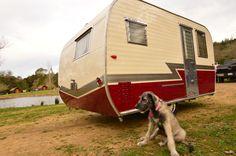 Matching set - puppy dog and vintage camper   tiny trailer - caravan <O>