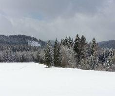 Kalt aber freundlich - das Wetter warm aber herzlich der Empfang im Geschäft! :) #winterimapril #Schwarzwald #wohnartistin #blog #Schnee #antikschwarzwald