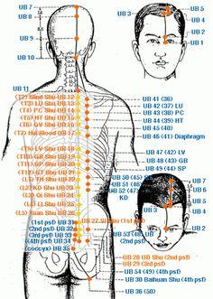 www.Shivambu.in, Alternative Medicine, trị liệu tự nước tiểu, Shivambu…