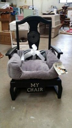 Chair dog bed.... So cute!! #teacupdogslist #teacupdogs #teacupbreeds…