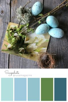Blue eggs and Art Cards flat lay with birds nest branches and lichen with blue and green color palette. from Rural Magazine's Instagram feed. Visit RURAL magazine for more info.