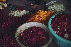 Flower Market in Lahore