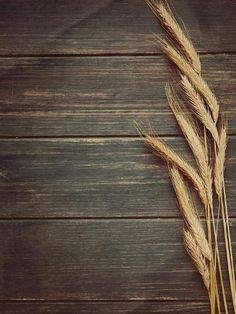 size: Photographic Print: Vintage Wheat Background by daughter : Food Background Wallpapers, Flower Background Wallpaper, Food Backgrounds, Flower Backgrounds, Rustic Background, Background S, Photography Backdrops, Nature Photography, Rustic Photography