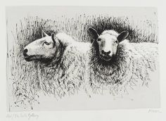 Moore OM, CH 'Sheep Before Shearing', 1974 © The Henry Moore Foundation. All Rights Reserved Art Pictures, Art Images, Animal Drawings, Art Drawings, Drawing Animals, Henry Moore Drawings, Sheep Face, Sheep Drawing, Sheep Paintings