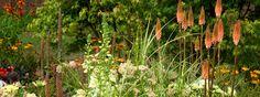 Tatton-Park 2012-Show-gardens. A-Taste-of-Ness, Phillippa Probert.