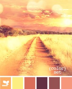 Color Sunset