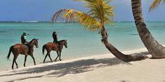 Horse riding catamaran cruise package (6)