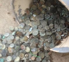 "Here's what's coming next.  Three buckets of ""nice and crusty"".  This picture was taken by a customer in California.  I'm really looking forward to seeing these corroded coins in person.  Notice how they're mixed with debris : sticks, a rubber band, etc.  That's normal.  We get it all the time.  Don't worry if your coins are like this.  Just send them to us as-is."