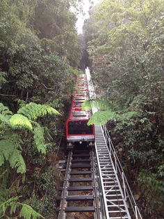 ScenicRailway Katoomba Blue Mountains I used to ride this with my darlin' Mum