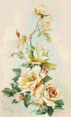 Pink wild roses by Catherine Klein ~ Catherine Klein, Art Floral, Floral Artwork, Botanical Flowers, Botanical Illustration, Botanical Prints, Vintage Diy, Vintage Flowers, Vintage Floral