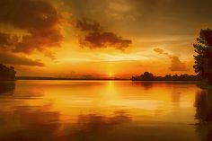 Golden Honey Sunset (Print) by Dan Holland fineartamerica.com