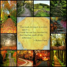 Two roads diverged in a wood, and I. I took the one less traveled by. And that has made all the difference - Robert Frost