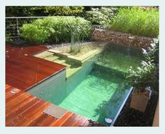Natural pool, no chlorine required. water is filtered by gravel and plants