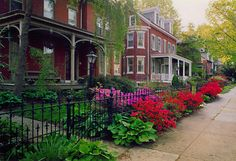 Many streets in West Chester are lined with beautiful historic homes making it a wonderful place to walk and explore. Beautiful Places In America, Wonderful Places, West Chester Pennsylvania, West Chester University, Brick Sidewalk, Brandywine Valley, Autumn Scenes, City Living, Beautiful Architecture