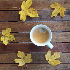 Tazza di caffè in autunno - Cogal Home