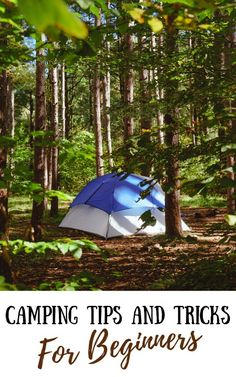 Camping Tips and Tricks for Beginners: Everything You Need to Know