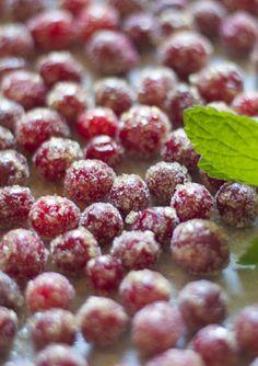 cup of mascarpone: sparkling sugar cranberries Holiday Treats, Christmas Treats, Holiday Recipes, Christmas Goodies, Holiday Desserts, Christmas Recipes, Holiday Fun, Sugared Cranberries, Eat Seasonal