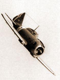 Italian Wing