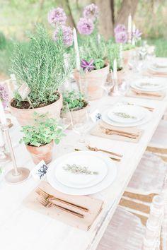 roots shoot – an elegant, organic, farm wedding Herb Wedding Centerpieces, Potted Plant Centerpieces, Rustic Wedding Decorations, Potted Plants, Wedding Favours, Plants Indoor, Centerpiece Ideas, Mesa Exterior, Pot Plante