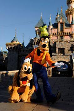 Pluto & Goofy www.facebook.com/JenniesMagicalAdventures