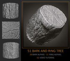 51 Bark and Ring Tree Alphas, Celito Moura Filho on ArtStation at https://www.artstation.com/artwork/5O6xw