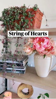 Interior Garden, Hanging Plants, Indoor Plants, Home Accents, House Plants, Fall Wedding, Peonies, Flower Arrangements, Glass Vase