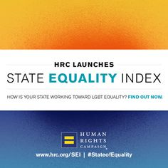 You Won't Believe What Statewide Protections LGBTQ People Lack: HRC's Inaugural State #Equality Index Finds Significant State-to-State Disparities in Discrimination Protections for LGBTQ Individuals, Families and Youth. Learn more at www.HRC.org/SEI #LGBTQ #StateofEquality