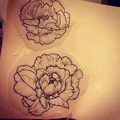 I especially like that these peonies have ridged petals. Also I like the fluffyness of the peonies, and this style of line drawing. Tattoo Sketches, Tattoo Drawings, Sketch Ink, Future Tattoos, New Tattoos, Tatoos, Skull Tattoos, Sleeve Tattoos, Piercing Tattoo