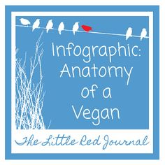 Infographic: Anatomy of a Vegan | The Little Red Journal | #vegan #healthy #infographic