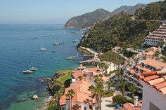 Catalina Island's Hamilton Cove Confers Creature Comforts and Commanding Views