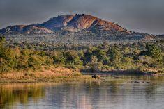 Shabeni Koppie image taken from Mtshawu Dam on a guided safari Kruger National Park, National Parks, Mountain Images, Park Landscape, Memorial Stones, Tree Images, Dark Skies, Game Reserve, Africa Travel
