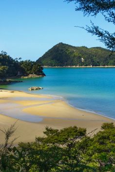 One of the Nine Great Walks in New Zealand is in the Abel Tasman National Park. A perfect combination of forest and beaches, a pleasant place for hiking. Beautiful Places To Visit, Beautiful Beaches, Beautiful World, New Zealand Beach, New Zealand Travel, Places Around The World, Around The Worlds, Marlborough Sounds, Abel Tasman National Park