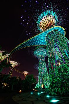 Gardens by the Bay, Marina Bay, Singapore -WOW! Singapore has some super cool architecture! Places Around The World, The Places Youll Go, Travel Around The World, Places To See, Singapore Garden, Singapore Travel, Sands Singapore, Visit Singapore, Singapore Tour