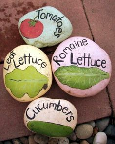 Cute painted stones veg garden allotment plant markers