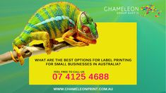 What are The Best Options for Label Printing for Small Businesses? Label Printing, Printing Services, Small Businesses, Australia, Good Things, Feelings, Prints