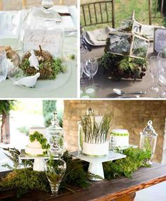 Elegant nature and glass centerpieces