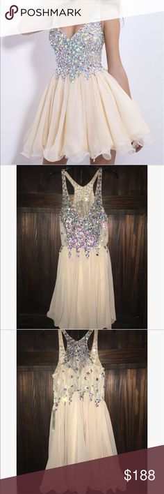 """Homecoming Dress Sparkly sequins, Bejeweled, Lace on side, Short(above knee), Champagne colored, fit and flare, zipper on the side, size 14 but runs small, chiffon """"skirt"""" with slip underneath, never worn. BEAUTIFUL!! Ellames Dresses Prom"""