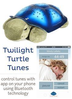 Twilight Turtle giveaway