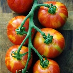 I've grown many varieties of heirloom tomatoes but here are my top 5 favourites for container gardening: Brandywine Indeterminate, Fresh Fruits And Vegetables, Organic Vegetables, Container Gardening, Gardening Tips, Balcony Gardening, Tomato Seeds, Heirloom Tomatoes, Beef Steak, Vegetable Garden