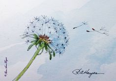 Dandelion In The Wind Print of Watercolor Painting ACEO