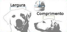Tabelas de medidas - Olhar Pet, roupa para cachorro, moda pet para seu cão, roupinhas para animais de estimação