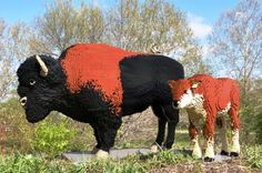 Life size buffalo and baby lego sculpture by Sean Kenney at Iowa's Reiman Gardens.