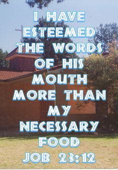 Job Neither have I gone back from the commandment of his lips; I have esteemed the words of his mouth more than my necessary food. Scripture Pictures, Holy Spirit, Bible Verses, Affirmations, The Balm, Lose Weight, God, Lips, Fresh Start