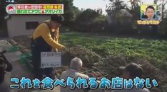 バナナマンのせっかくグルメ★移住者増加中 話題の福岡県糸島半島へ 20171224
