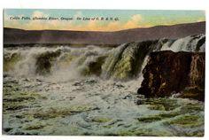 Vintage 1910s Celilo Falls Columbia River Oregon O R and N Railroad Postcard A 8458, Unused Souvenir View