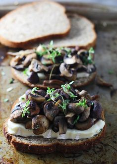 Triple Mushroom, Brie and Thyme Melts    Really nice recipes. Every hour.