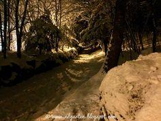 Hohle Gasse nachts und bei Schneefall Wilhelm Tell, Winter, Snow, Outdoor, Viajes, Winter Time, Outdoors, Outdoor Living, Garden