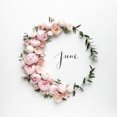 June june hello june june quotes hello june quotes welcome june Pea Gravel Garden, Foto Banner, June Quotes, Daily Quotes, Hello May Quotes, New Month Quotes, Welcome June, Party Banner, Tout Rose