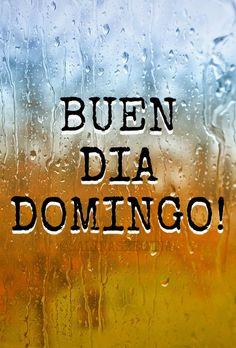 FELIZ DOMINGO RAIN
