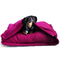 The perfect dog bed for small, burrowing dogs. Uses a bed pillow for the insert. Easily washable. Eco Pet Bed  Recycled Pink Fleece by anniessweatshop on Etsy, $60.00